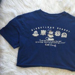 Vintage Disneyland Cropped Tee Embroidered